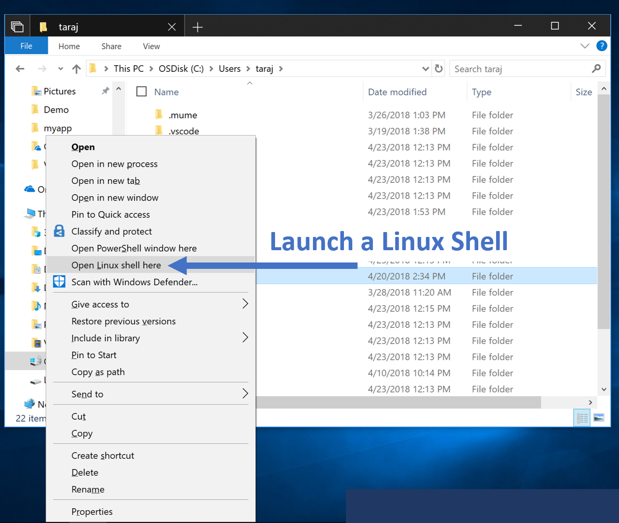 Windows Subsystem for Linux - The Windows 10 October 2018