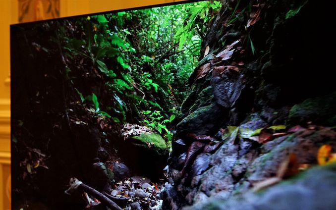 Dell at CES 2019: Alienware 55-Inch 4K 120 Hz OLED Gaming Monitor Showcased - AnandTech - showcased, monitor, gaming, anandtech, alienware