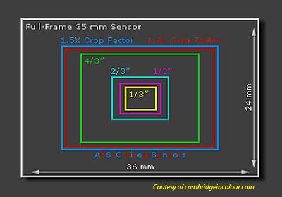 http://images.anandtech.com/reviews/cameras/2008/sony-a900-handson/sensor-size.jpg
